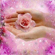 Flowers Gif, Love Flowers, Holding Flowers, Gifs, Beautiful Roses, Beautiful Hands, Rosas Gif, Loved One In Heaven, Gif Animé
