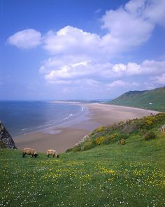 Wales Travel Inspiration - Rhossili  Bay, South Wales, ranked 10th best beach in the world by VK Guy