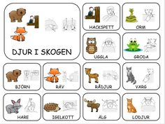 Teckenkartor Preschool Graduation, Preschool Math, Kindergarten, Sign Language Book, Learn Swedish, Swedish Language, School Signs, Outdoor Learning, Farm Theme