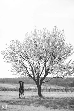 Analog Pic by: www.karlbluemel.com <3 #kirschblüte #donnerskirchen #burgenland #austria #karlbluemelphotography Kirchen, Outdoor Furniture, Outdoor Decor, Film Photography, Austria, Country Roads, Black And White, Park, Places