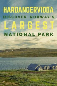 Looking for some adventure in Norway? The massive plateau of Hardangervidda should be your next destination. There's so much to discover!