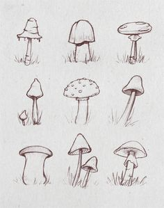 Good Pic drawing ideas nature Style : ometimes I use the Some Create Method throughout physique pulling sessions. There, you apply three quite varied illustrating practices that will allow. Fall Drawings, Doodle Drawings, Doodle Art, Mushroom Drawing, Mushroom Art, Plant Sketches, Drawing Sketches, Drawing Ideas, Plant Drawing