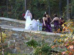 Garven Gardens wedding party   Flickr - Photo Sharing! Arkansas Mountains, Garden Wedding, Gardens, Places, Party, Outdoor Gardens, Parties, Garden, House Gardens