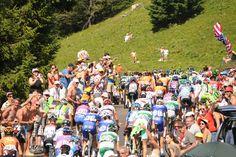SAMEDI 20 JUILLET - ÉTAPE 20: 125km Annecy / Annecy - Semnoz Le peloton dans les Alpes. © A.S.O. / B.Bade