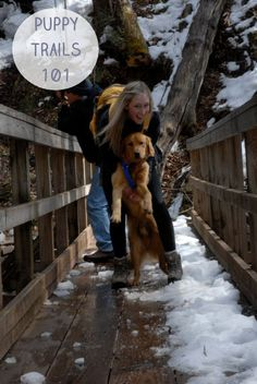 Dirtbag Darling: How To Keep Your Dog Safe and Healthy While Hiking