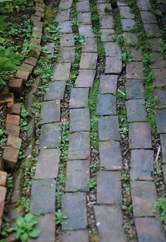 Brick Walk by {Susan Wolfe}, via Flickr