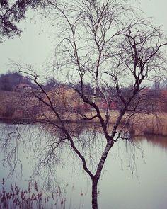 Reposting @razinhio: Adopte le rythme de la nature, son secret est la patience.bonne soirée  #sun #clouds #follow4follow #love #my #life #photographer #tree #photography #photo #picoftheday #photooftheday #instagram #top #instagood #instalike #like #cool #nature #like4like #mountains  #good #lake #beautiful #paradise #france #naturephotography #happy #naturelovers
