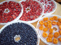 Food Preservation – Drying Food – Dehydrating Food « Kipnews | Knowledge is power