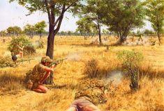 Resultado de imagen para Rhodesian Bush War