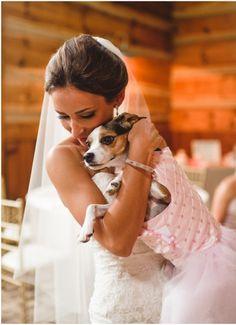 Swann Lake Stables Wedding in Blush : Julianne and Scott Joe Wedding Dogs, Cat Wedding, Pink Tutu, Dog Days, Wedding Pictures, Puppy Love, Wedding Ceremony, Sassy, Wednesday