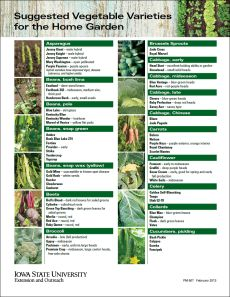 Suggested Vegetable Varieties for the Home Garden - Iowa gardeners can select vegetable varieties that perform well in their gardens with Suggested Vegetable Varieties for the Home Garden, a free Iowa State University Extension and Outreach publication.