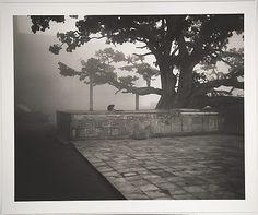 Dawn Along the Yamuna, Vrindavan, India Fazal Sheikh (American, born 1965)