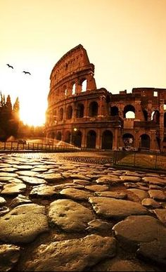 Roman Colosseum ~ Rome, Italy , from Iryna