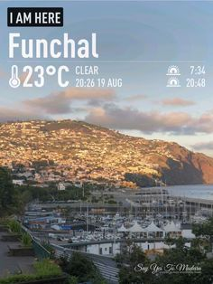 Weather in Madeira in August (2020) | Say Yes to Madeira Funchal, August Weather, Flower Festival, Photo Report, Ocean City, Weather Conditions, New Pictures, Island, Tropical Garden