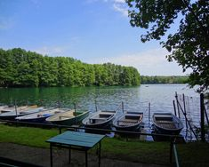 Berlin has more than 100 lakes to cool off on hot summer days. Swim at all of Berlin's beast beaches.