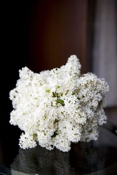 Absolutely Stunning…. A bouquet of all white lilacs.♥