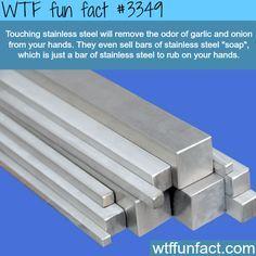 - WTF fun facts