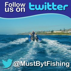 The birds are always on board. us to find out what happens and on land! Fishing Charters, Follow Us On Twitter, Sea Birds, Competition, How To Find Out, Shit Happens, Board, Movie Posters, Instagram