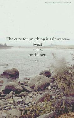 Sweat. Tears. Sea. Understood