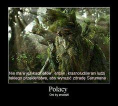 Hobbit w 200 rozdziałach - Zakończone Polish Memes, Past Tens, Weekend Humor, Funny Mems, Dad Jokes, Tolkien, Lotr, The Hobbit, Boku No Hero Academia