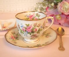 Vintage Tea Cup Set with Pink Roses | Roslyn English Fine Bone China Teacup and Saucer | Moss Rose