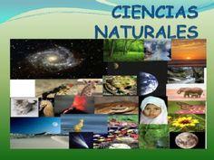 Ciencias Naturales | Banco de recursos: 5º primaria | EducaMadrid