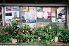 Kyoujima Tokyo | Flickr - Photo Sharing!