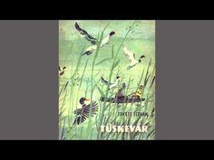 Fekete István - Tüskevár (Hangoskönyv) - II. rész