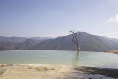 Natural infinity pool - Oaxaca