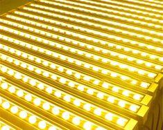 Zen Ash - Novelty LED Lights  Price: 1579.00 & FREE Shipping  #homedecor Safe Shop, Outdoor Walls, Modern Lighting, Ash, Bulb, Lights, Free Shipping, Interior Design, Gray