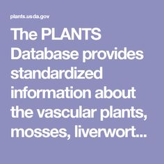 The PLANTS Database provides standardized information about the vascular plants, mosses, liverworts, hornworts, and lichens of the U.S. and its territories.