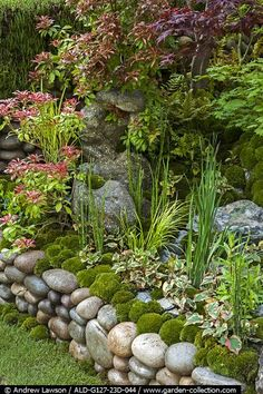 When you have a reason to celebrate ,CELEBRATE BIG! Forget about the same old greeting card Moss Garden, Garden Art, Garden Design, Home And Garden, Landscaping With Rocks, Backyard Landscaping, Design Jardin, Garden Borders, Garden Structures