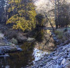 #nature #naturephotography #creek #pennsylvania #water #fall #autumn