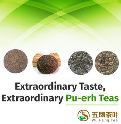 Wufeng Tea is a leading wholesale Chinese tea supplier of high-quality Chinese teas, providing various types of teas like green tea, oolong tea etc. Order now! Pu Erh Tea, Changsha, Wholesale Supplies, Types Of Tea, Oolong Tea, Chinese Tea, Teas, Dog Food Recipes, Canning