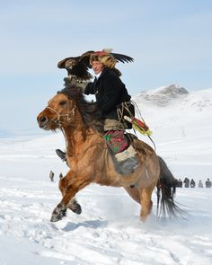 Now, this man is a B.A. fa sho!    72 years old kazakh hunter with eagle      Ulaanbaatar, Mongolia