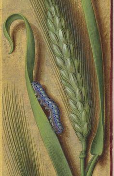 Grandes Heures d'Anne de Bretagne 1686 94r
