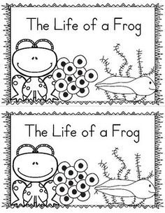 I created this emergent reader to use while my students are studying life cycles and the life cycle of a frog.You may also like my other Life Cycle of a Frog ActivitiesLife Cycle of a Frog CraftLife Cycle of a Frog Hat (Sequencing Activity). Frogs Preschool, Kindergarten Science, Kindergarten Reading, Teaching Science, Elementary Science, Frog Activities, Spring Activities, September Activities, Sequencing Activities