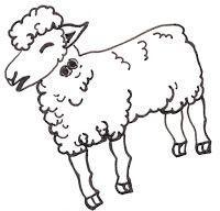 Enquanto o Papa Figo não vem! Causos e contos fantásticos nos arredores de Recife: Tá correndo bicho: a menina e as ovelhas