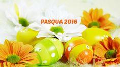 Vi apsettiamo per festeggiare Pasquetta insieme in pizzeria con menù alla carta. Contattaci per info e prenotazioni!!