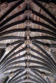 Paisley Abbey...Home x