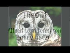 """""""The Owl"""" by Alfred, Lord Tennyson (poetry reading)"""