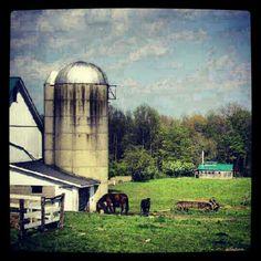 #Amish farm in #Geauga County #Ohio