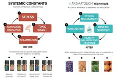 Aromatouch therapy oils - My Yahoo Search Results