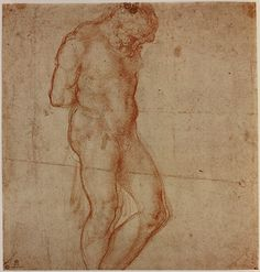 anatomy by Michelangelo - study -