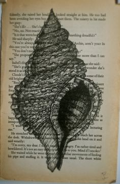 Original Conch Shell sketch on old book page by Yoopershop, $25.00 Cool idea to do art work over book page