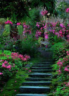 Beautiful garden staircase.