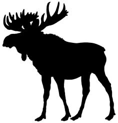 A woodland animal silhouette of one of the largest animals in the forest. A beautiful moose silhouette.