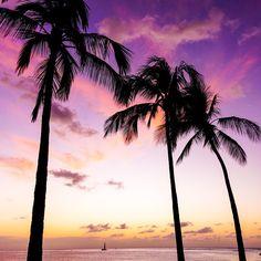 Hawaiian Sunset shot with a Sony a6000 via sf_photos_hawaii on Instagram