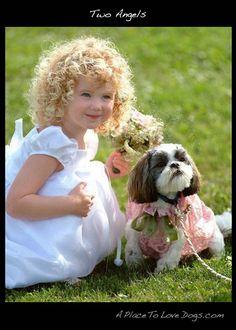 two angels   A Place to Love Dogs