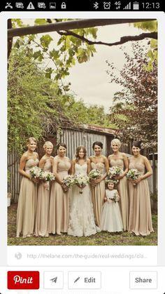 biscotti bridesmaids dresses